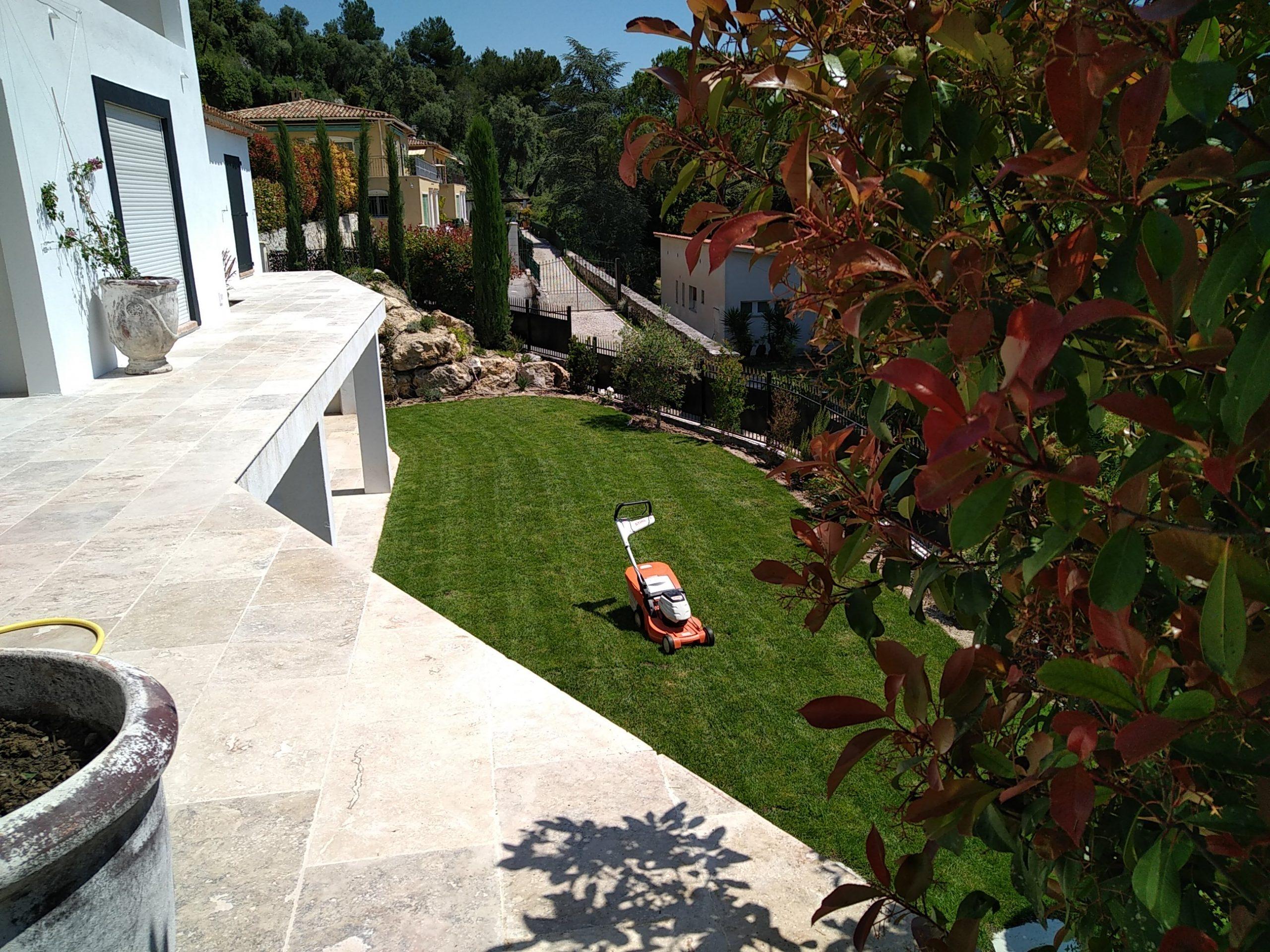 Création pelouse (première tonte)