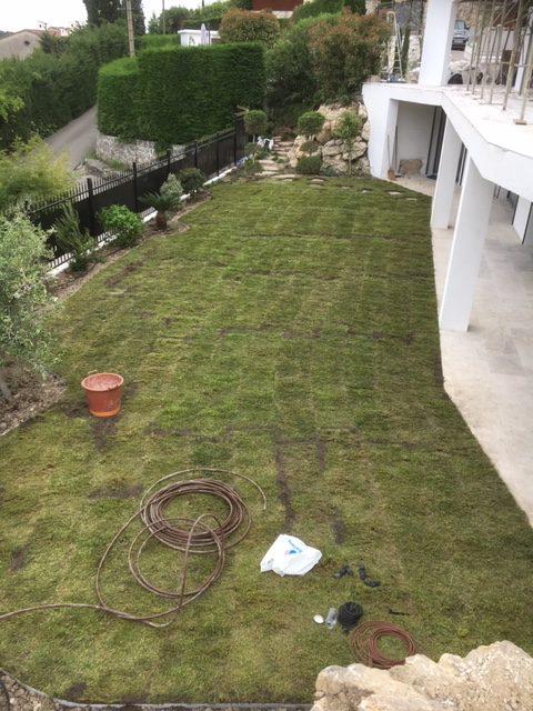 Création pelouse (pose du gazon)